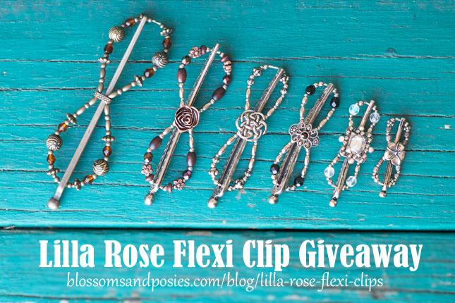 Lilla Rose Mega Flexi Clips