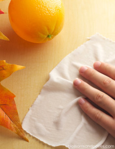DIY orange cleaning wipes from Autumn Bliss - blossomsandposies.com