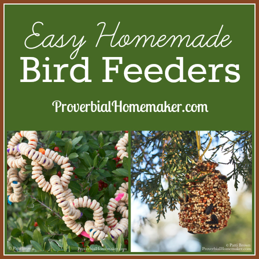 easy-homemade-bird-feeders